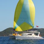 "sailing catamaran ""Viking Dream"""