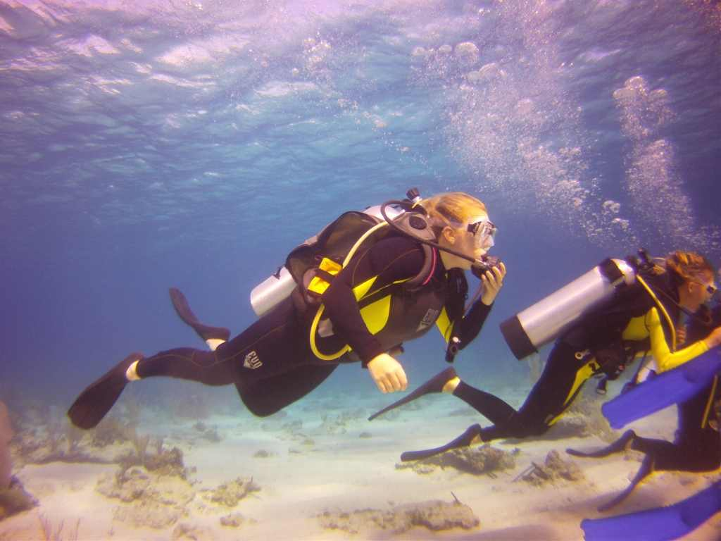 Best Scuba Diving In Florida