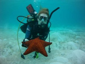 Aqua Safari Adventures Scuba Diving, Starfish and Diver