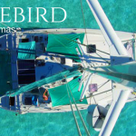 Charter catamaran Freebird shows you the best of the Exumas.