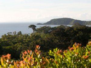 La palma, Darién in Panama - Panama yacht charters