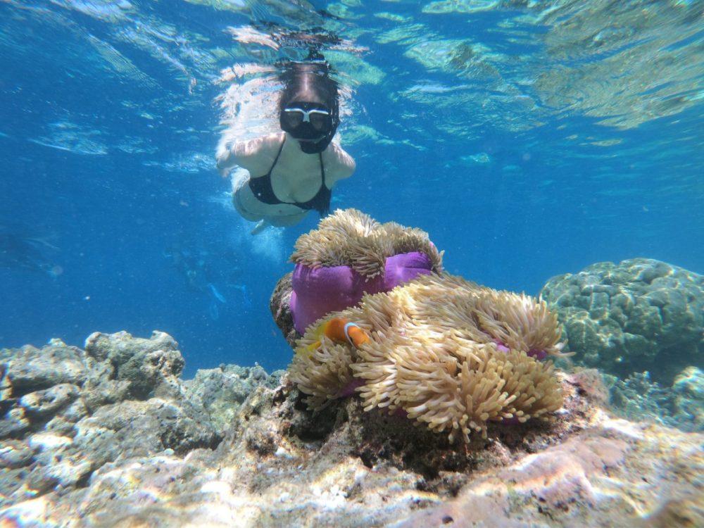 Key West to Key West Itinerary